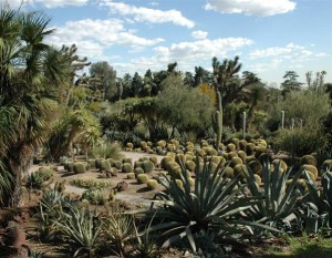 Desert Garden, Huntington, Californie
